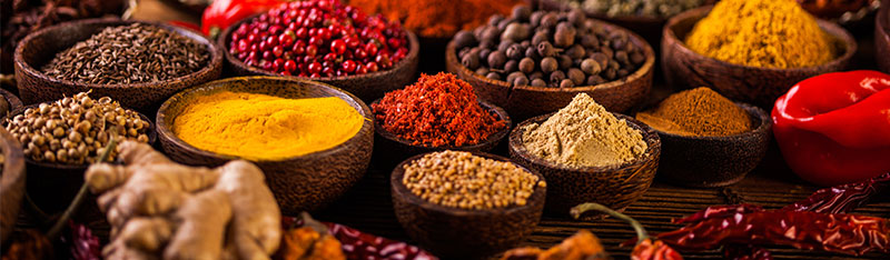 Spices800x234